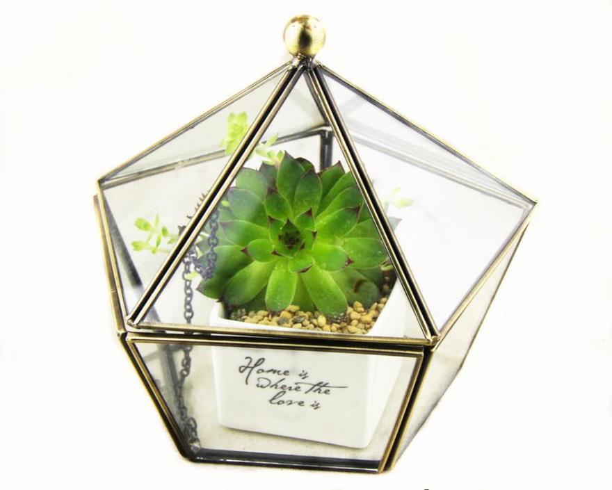 大五角几何体玻璃花房花盆古青铜