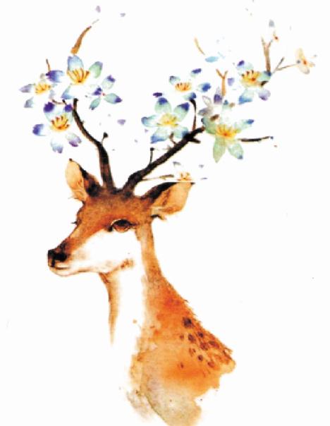 手绘麋鹿 花鹿头 原创纹身贴纸 防水清新田园花臂 女神必备