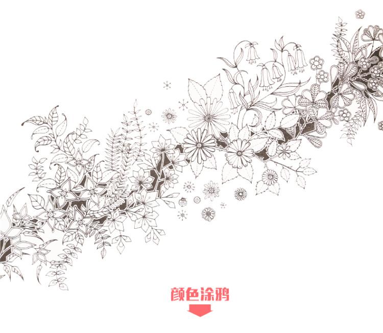 秘密花园送36彩色铅笔韩文