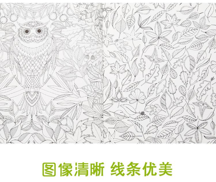 韩版秘密花园手绘涂色书送画笔