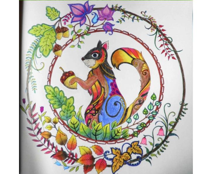 秘密花园手绘本(魔法森林2)最新续作送24色彩铅笔
