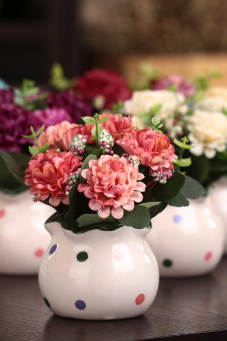 盆景,盆栽,绿植,玫瑰花